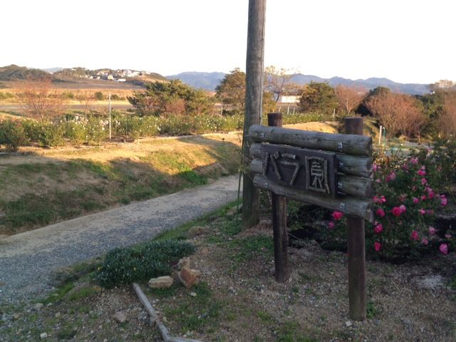 a 平草原