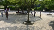 VideoC-0149 9:8:2012