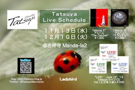 ladybirdflyer