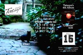 20150820stray