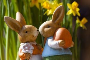 2人ウサギ