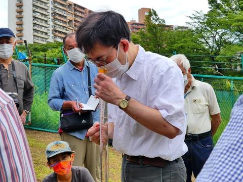 水質検査 6 透明度検査
