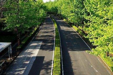 ab  緑路 (4)