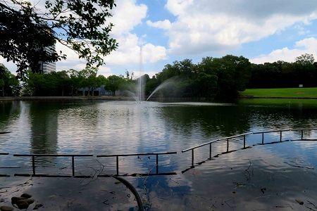 噴水池 (19)