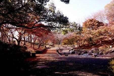 一本杉 (1)