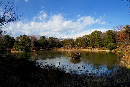 a 豊ケ丘池