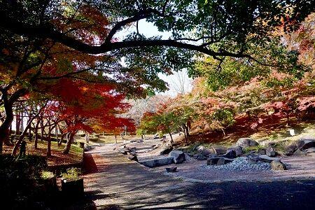 一本杉公園で (2)