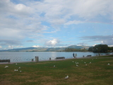 ロトルア湖