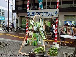 tanabata2011 (13)