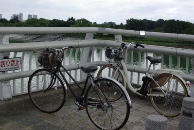 自転車のツーリング