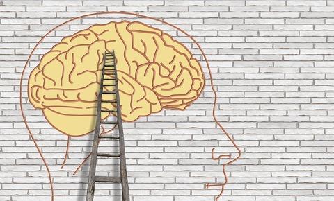 脳覚醒プログラムの感想と効果