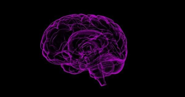 ドリームアートラボラトリー岩波英知によるマインドフルネス瞑想を超えた脳覚醒