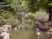 東綾瀬公園1