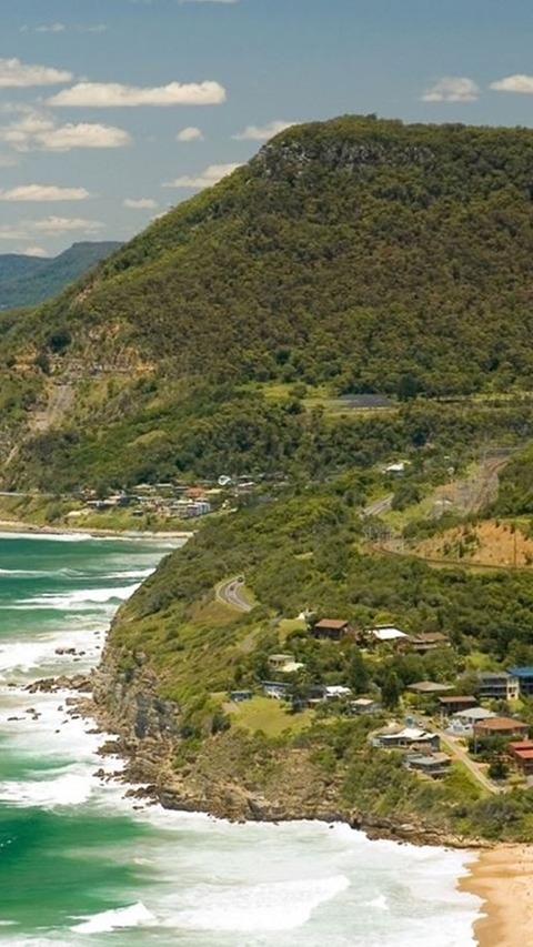 A View From Bald Hill