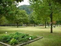 あいかわ公園芝生広場