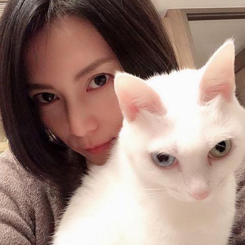 """『柴咲コウ、愛猫との""""目ヂカラ""""ショットに「ホントに美しい」ファンため息』"""