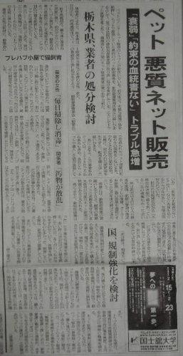 朝日新聞」