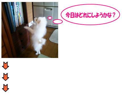 blog-pose-331-1