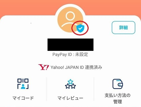 PayPay_blue_badge_1