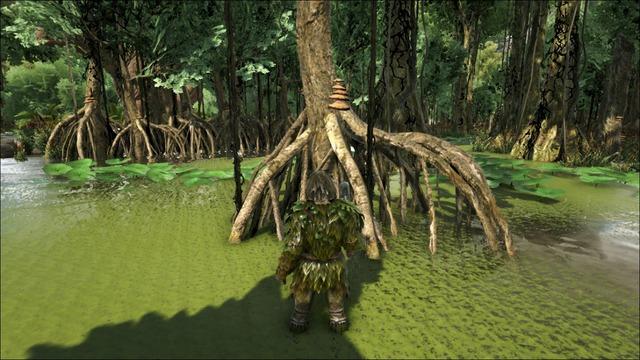 マングローブ伐採