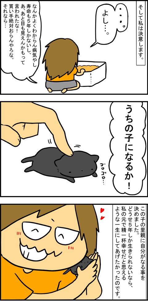 出会い4-4