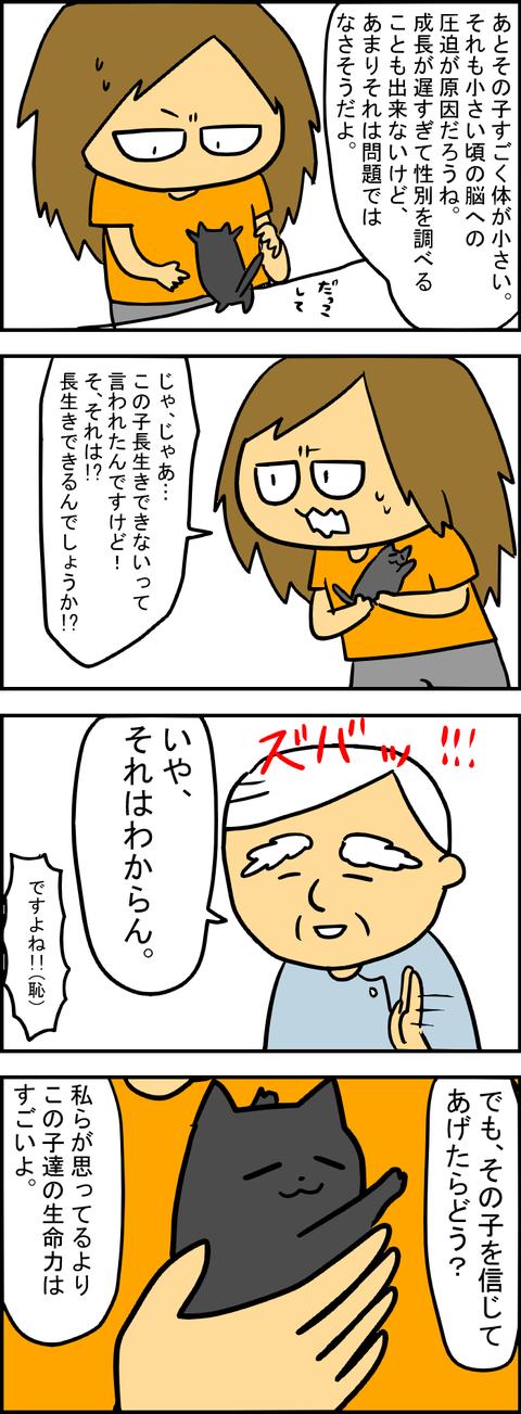 出会い5-3