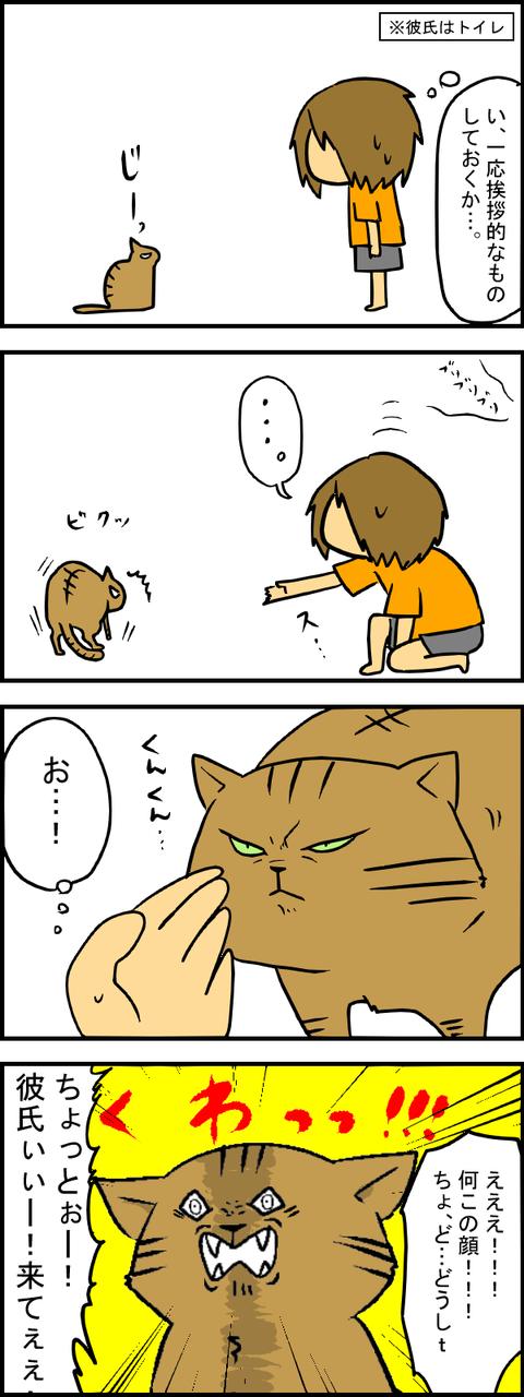 ぶーちゃん初対面2
