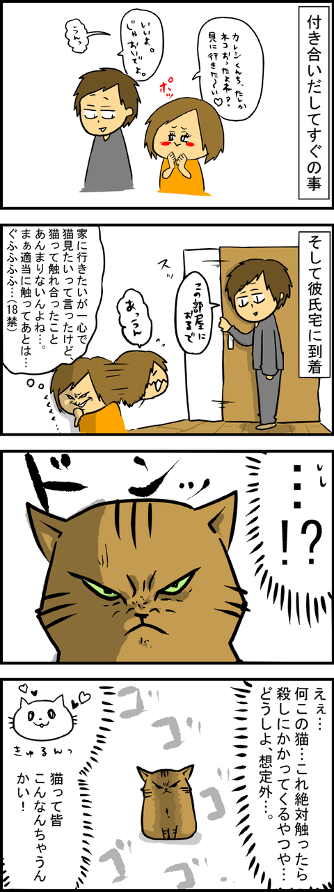ぶーちゃん初対面