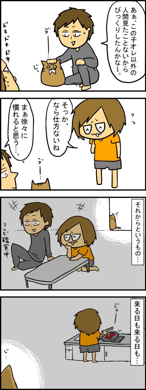 ぶーちゃん初対面3