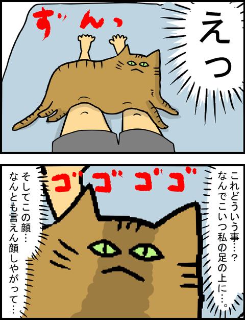 ぶーちゃん初対面9