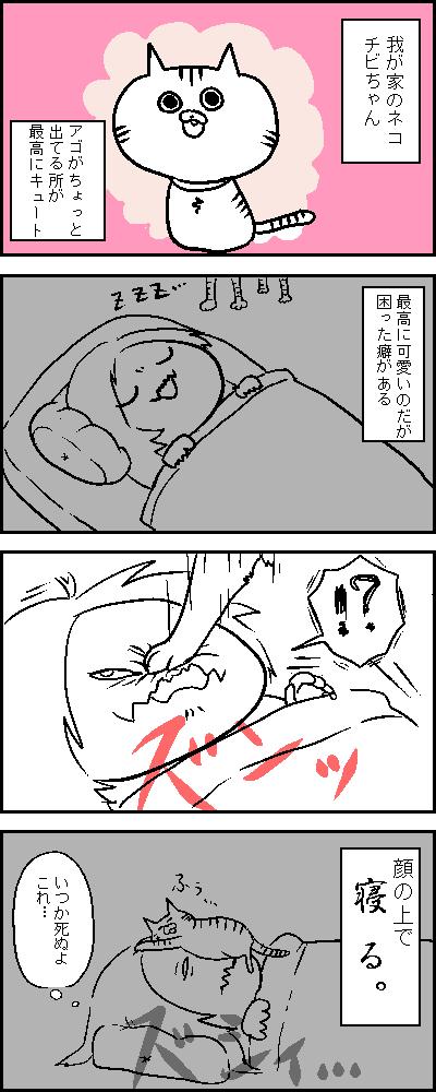 ねこの寝相