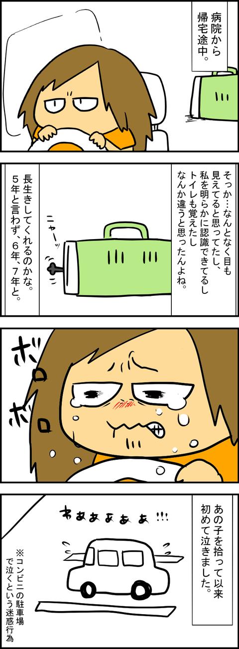 出会い5-4