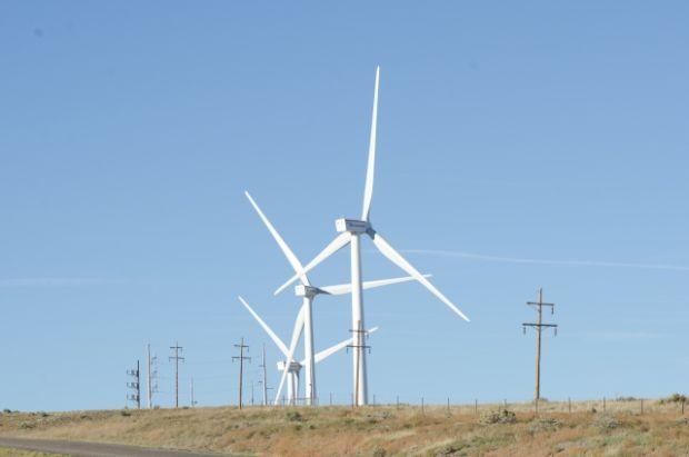 韓国人「(閲覧注意)風力発電の裏の姿をご覧ください…」