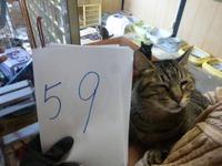 59みどり