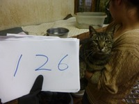 126にー