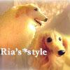 Ria's*styleへのリンクボタン