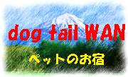 dog tail WAN