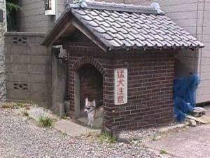 http://livedoor.blogimg.jp/waosoku/imgs/4/b/4bd37a64.jpg