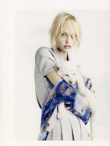 http://livedoor.blogimg.jp/waosoku/imgs/5/0/50d56c9f.jpg
