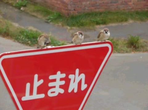 http://livedoor.blogimg.jp/waosoku/imgs/7/e/7e5d9234.jpg