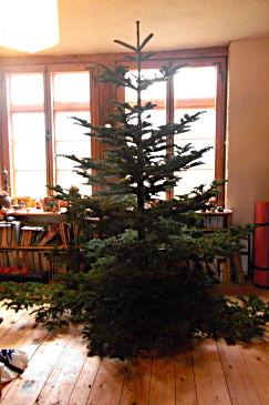 weihnachtsbaum02