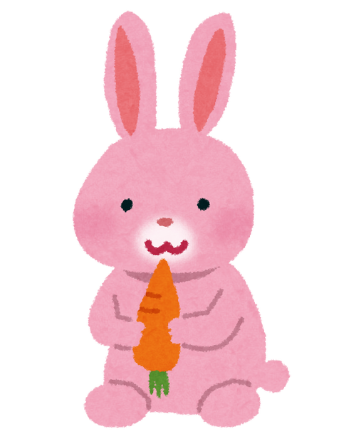 usagi_pink