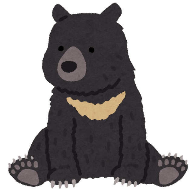 animal_bear_tsukinowa