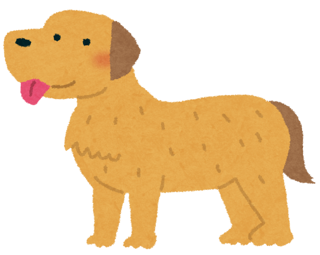 dog_golden_retriever