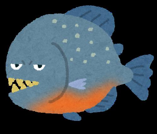animal_piranha