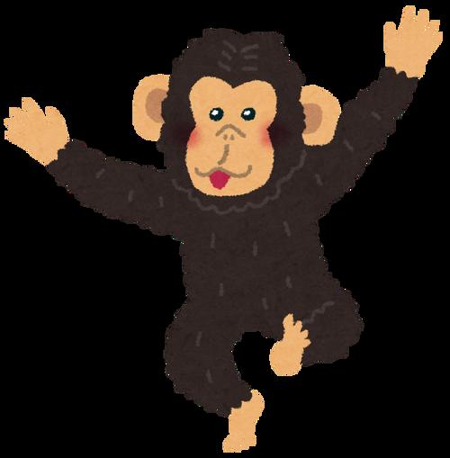 animal_chimpanzee