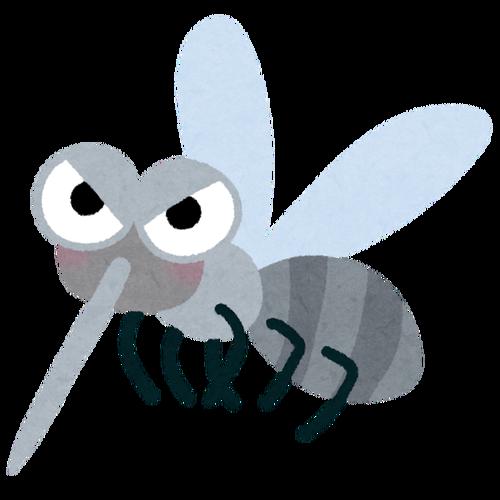 bug_ka
