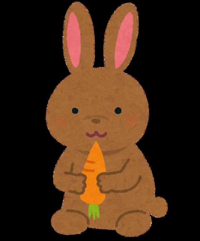 animal_usagi_brown