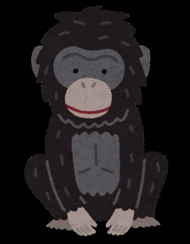 animal_bonobo