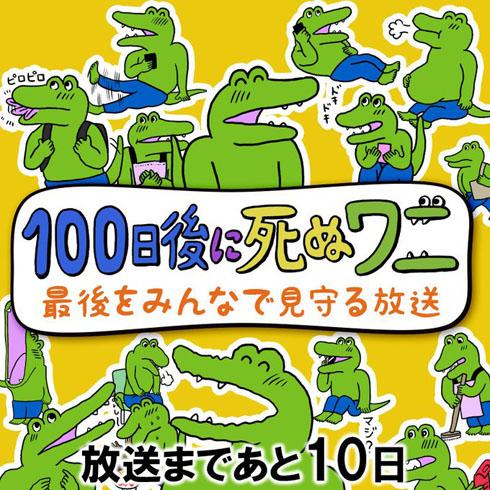 kutsu_200311wani01